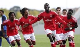 Juniores: Benfica passa a ter 11 pontos de avanço para o Sporting