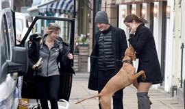 Ana Ivanovic foi atacada pelo cão... de Chris Smalling
