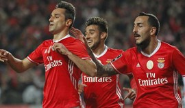 Jonas, Salvio, Mitroglou ou Carrillo: o que dizem as contas do Benfica