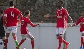 Benfica vence antes da final four da Liga Jovem da UEFA