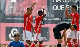 Benfica vence Académica e adia festa do título