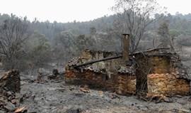Benfica disponibiliza apoio a vítimas dos incêndios