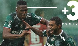 Palmeiras cada vez mais perto do título