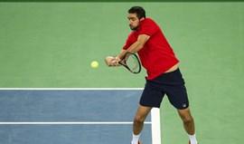 Taça Davis: Cilic sofre mas coloca Croácia a vencer por 1-0 na final