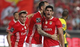 Benfica-P. Ferreira, 1-0: Cervi fecha ano glorioso