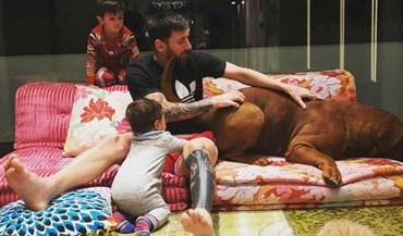Que tipo de ração Messi estará a dar ao seu cão?