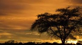 Descubra a Namíbia. Vale mesmo a pena!