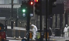 Atentado de Londres: sete detidos após raide em Birmingham