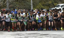 Liga Allianz Running by Record: Rio Alva embala atletas