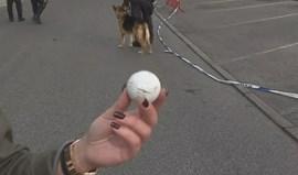 Adeptos benfiquistas atiraram pedras e bolas de golfe contra claque portista