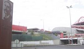 Benfica lamenta veementemente morte junto ao Estádio da Luz e lança apelo