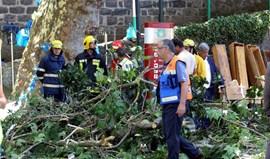 Nacional manifesta solidariedade para com as vítimas da tragédia na Madeira