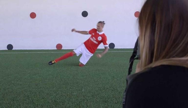 Benfica 'garantido' em todas as frentes: Fejsa fez isto... seguríssismo