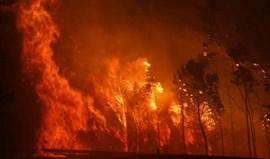 Incêndios: número de mortos sobe para 43