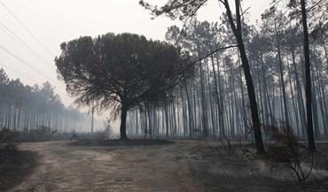 Chuva já deu uma ajuda: país acordou sem incêndios