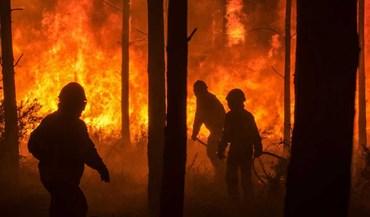 Incêndios: OE2018 devia incluir medidas fiscais para zonas afetadas