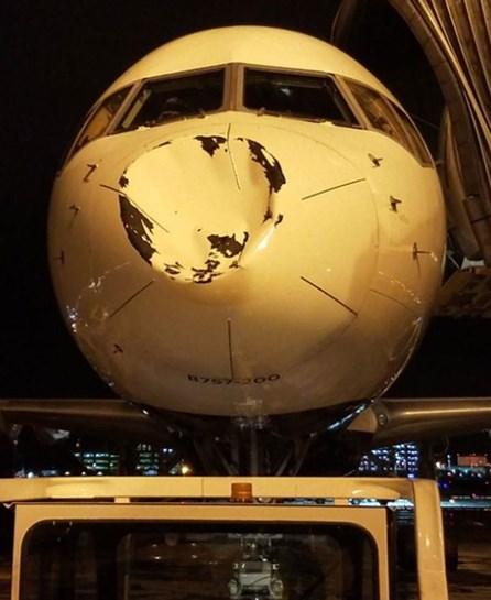 Avião em que estavam jogadores da NBA colide com objeto não identificado