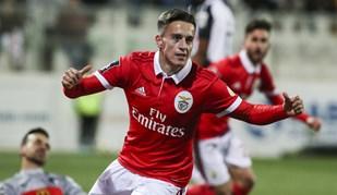 As melhores imagens do Portimonense-Benfica
