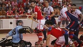 Liga Europeia: Benfica e Oliveirense já conhecem adversários da 'final four'