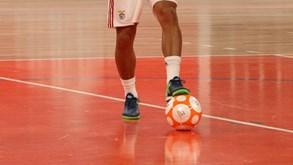 3ced7d3dfa Futsal · Benfica vence Futsal Azeméis ...