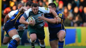 Leicester Tigers-Scarlets: Duelo na Champions Cup