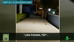 Ratazanas invadem clube de Barcelona e alarmam pais das crianças