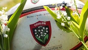 RC Toulon-Clermont: Favoritismo para confirmar