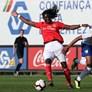 David Tavares blindado pela SAD do Benfica