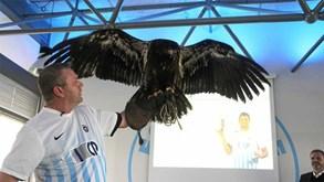 Clube dinamarquês obrigado a vender águia para evitar falência