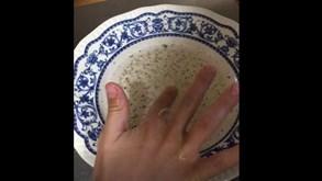 Este vídeo mostra bem a importância de se lavar as mãos: pai explica com exemplo o que acontece ao vírus