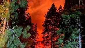 Rapaz de 14 anos aprende a conduzir a fugir ao fogo