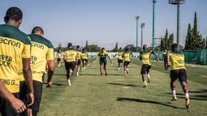 Perigo de contágio por Covid-19 suspende plano B do Sporting
