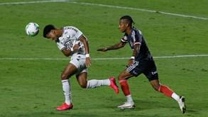 Botafogo-São Paulo: duelo da penúltima jornada do Brasileirão