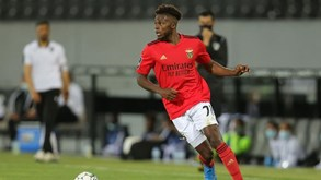 Lazio insiste em Tavares