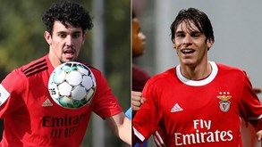 Tomás Araújo e Paulo Bernardo no plantel do Benfica: dupla convence estrutura