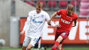 Schalke 04-Hamburgo: os dois históricos travam forças na 2.ª divisão alemã