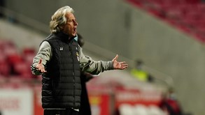 Agenda desportiva: Sporting pressionado por Benfica imparável